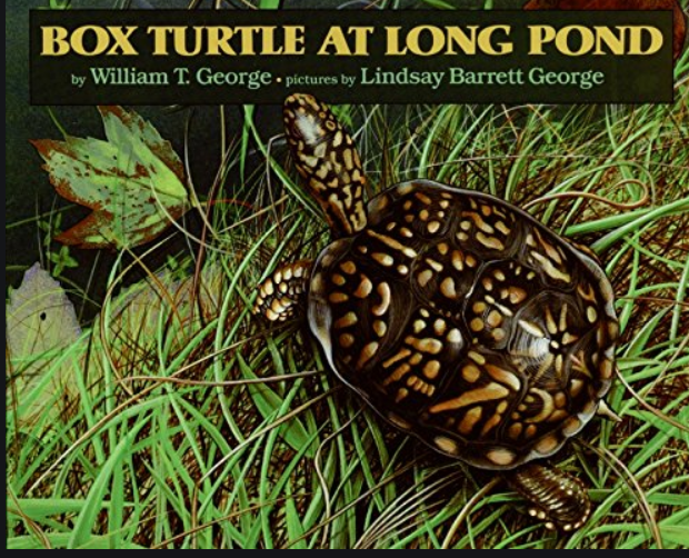 Mrs. D. Hammond reading Box Turtle at Long Pond